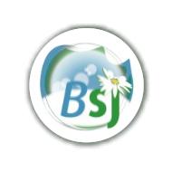 Logo de l'entreprise 'Blanchisserie St Jean'